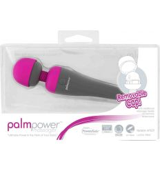 PalmPower Massager 30480